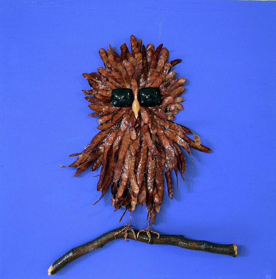 Ruffled Feathers by Charla Van Vlack