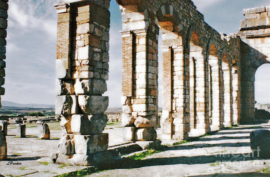 Ruins of Volubilis - Morocco by Linda Parker