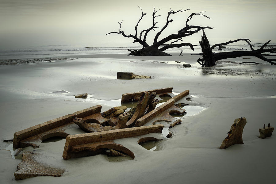 Ruins on Driftwood Beach by James Covello