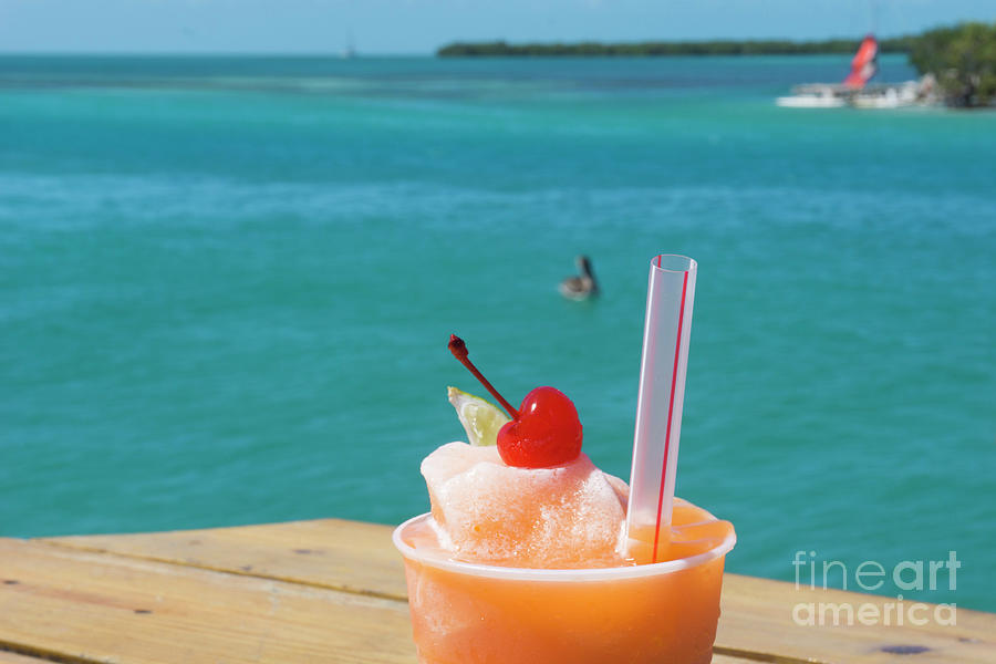 Rum Punch and Pelican by Randall Saltys