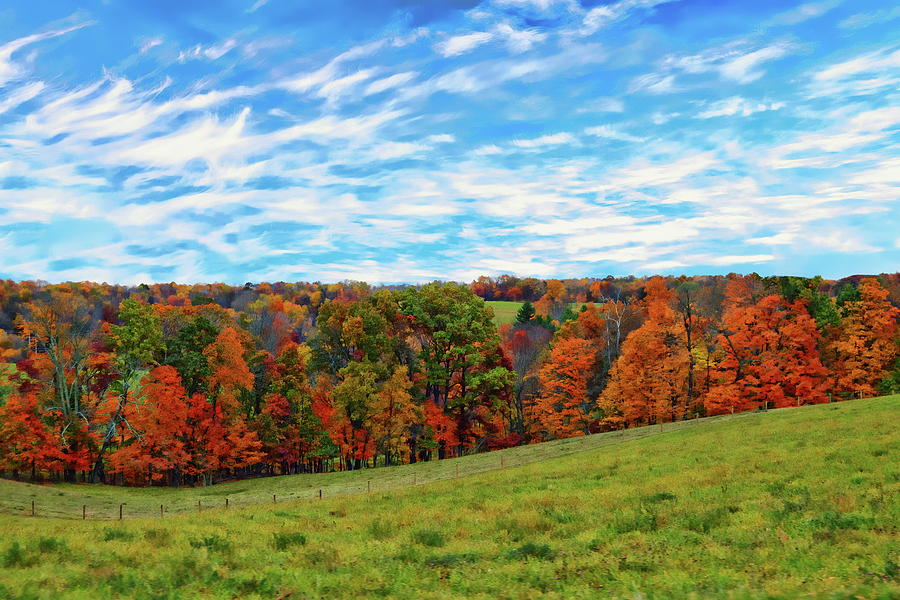 Rural Autumn Scene Photograph