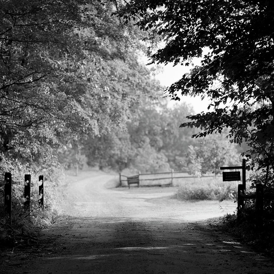 Rural Dirt Road In New England Photograph by Adam Garelick