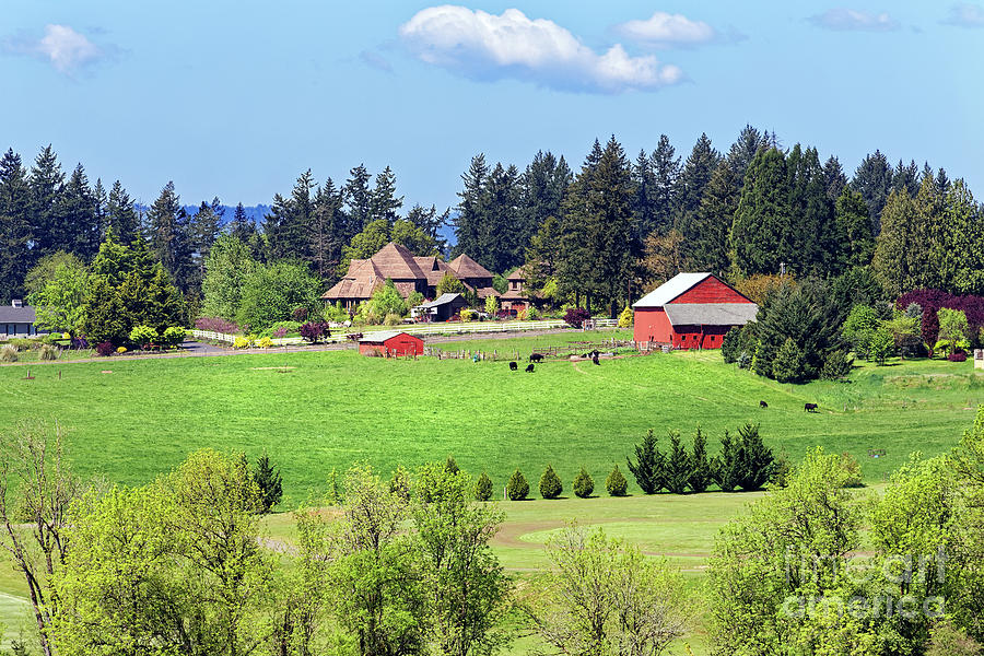Rural home barn pasture cattle Wilsonville Oregon by Robert C Paulson Jr