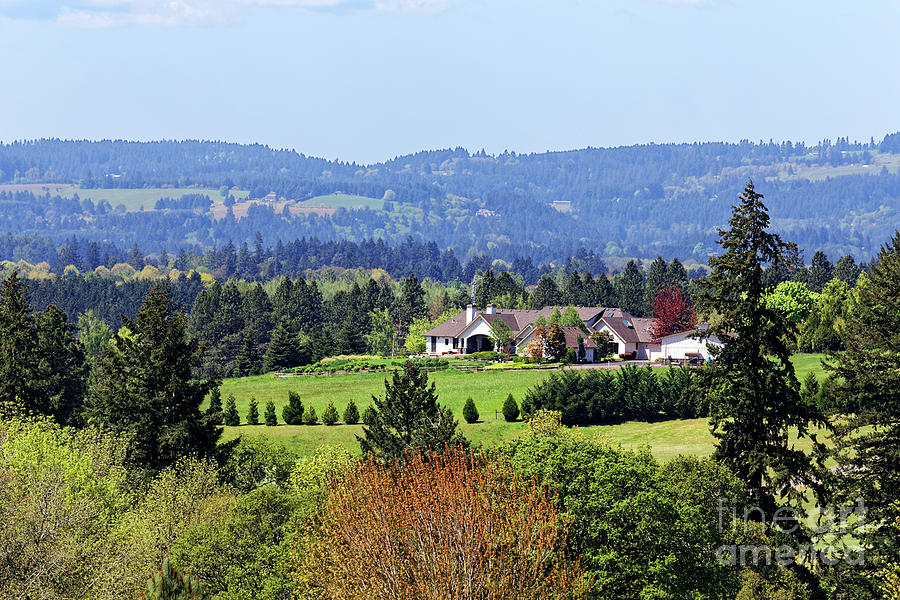 Rural Home Photograph - Rural Home Hills Forest Wilsonville Oregon by Robert C Paulson Jr