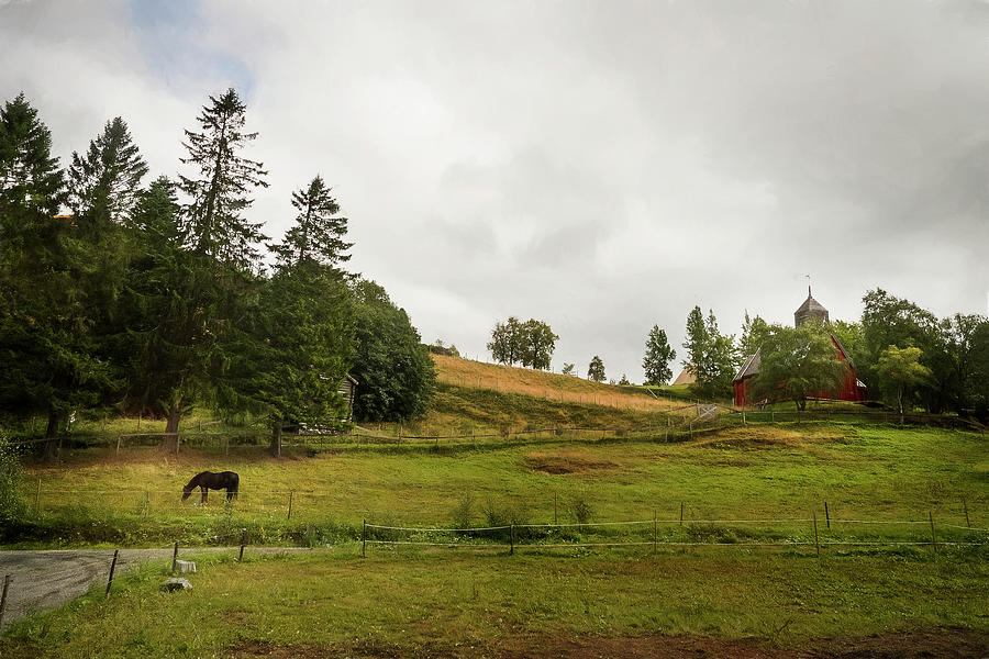 Rural Landscape in Trondheim Norway by Whitney Leigh Carlson
