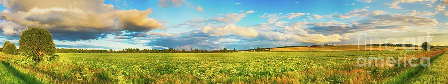 Rural Landscape. Panorama Photograph
