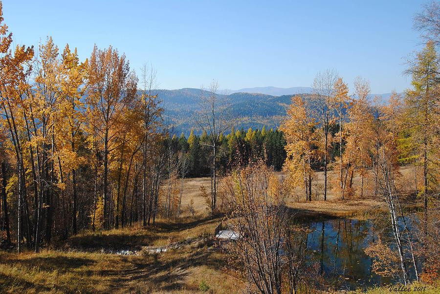Montana Photograph - Rural Montana by Vallee Johnson
