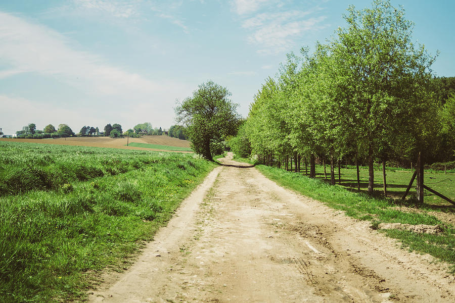 Rural Spring Dirt Road by Pati Photography