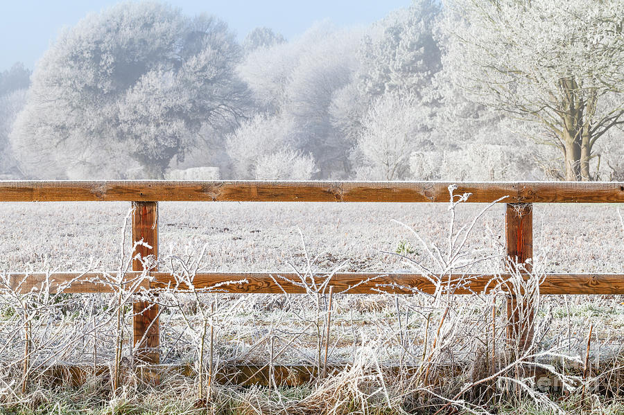 Rural winter snow scene and fence by Simon Bratt Photography LRPS