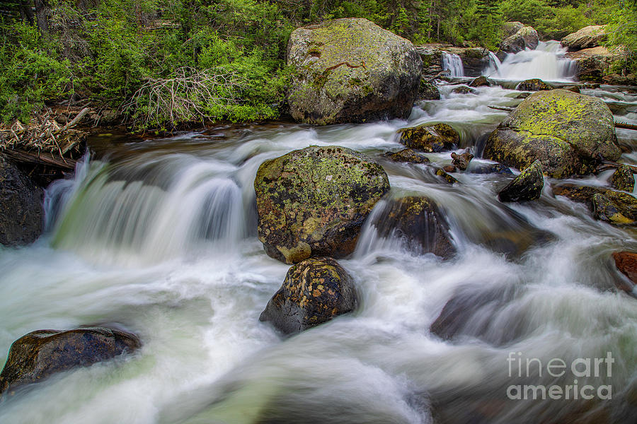 Rushing Colorado Mountain Stream by Ronda Kimbrow