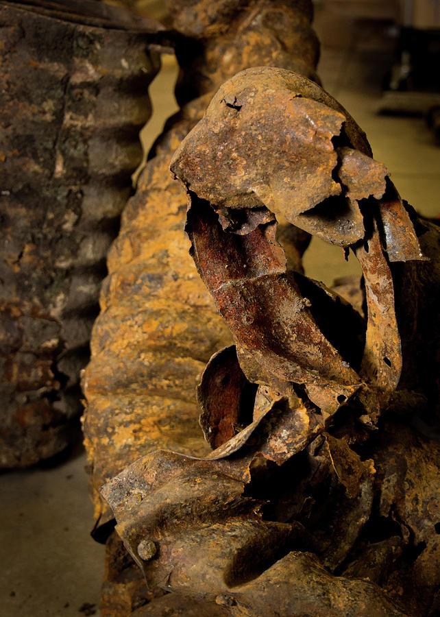 Rust Creature by Mark Salamon
