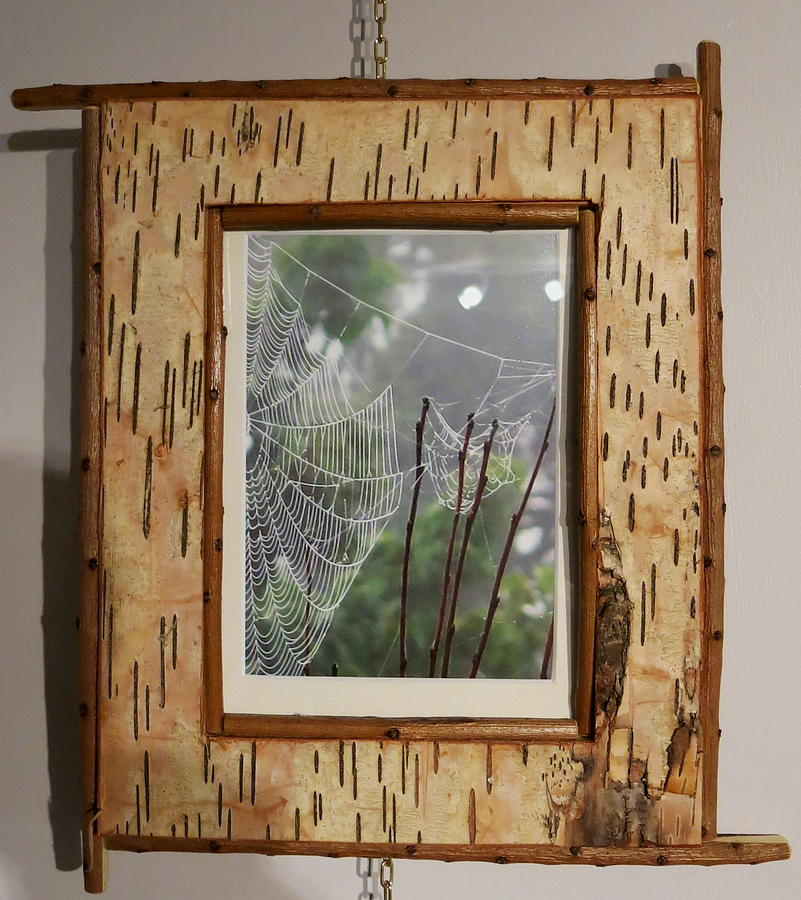 Rustic Frame With Cobweb Mixed Media By Jim Caufield