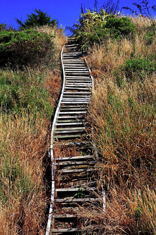 Rustic Steps by Nareeta Martin