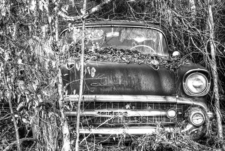 Rusting Away by Brian Cole