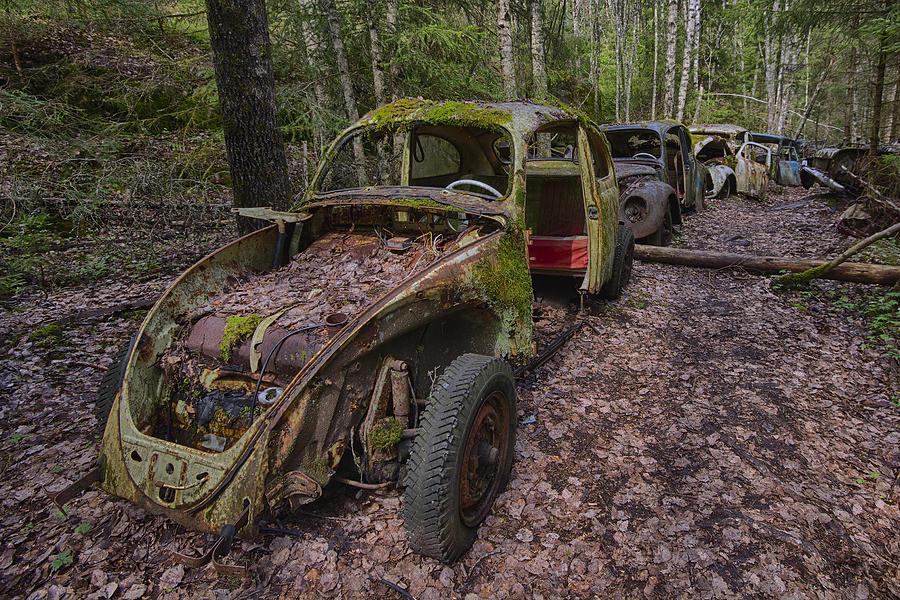 Rusty Photograph - Rusty Beetle by Knut Saglien