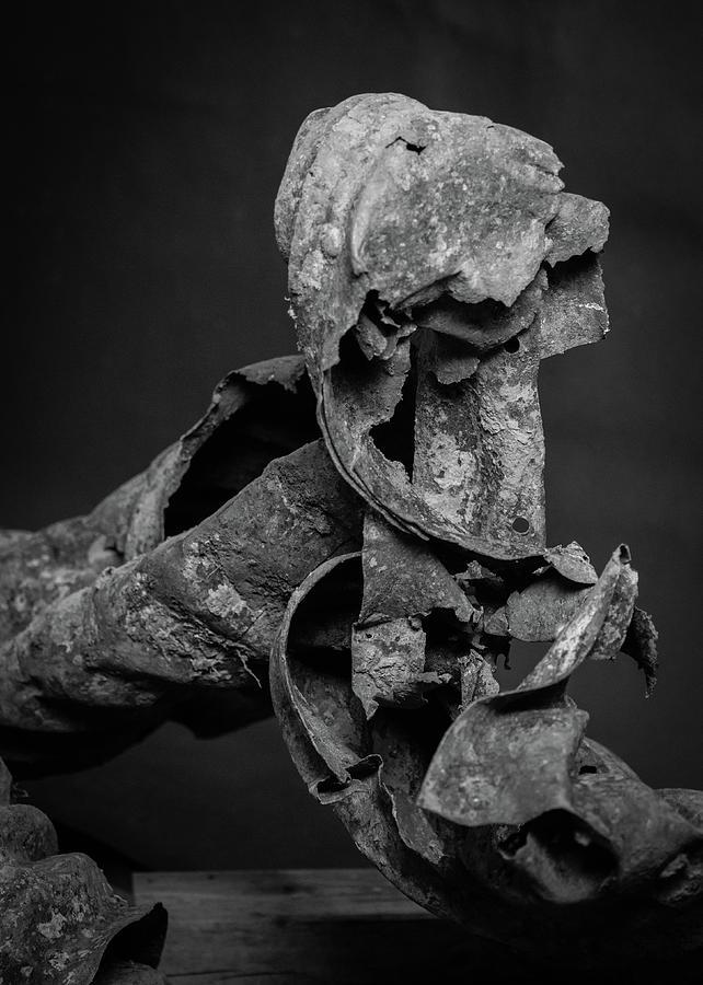 Rusty Dog by Mark Salamon