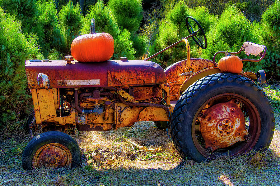 Rusty Tractor With Autumn Pumpkins by Garry Gay