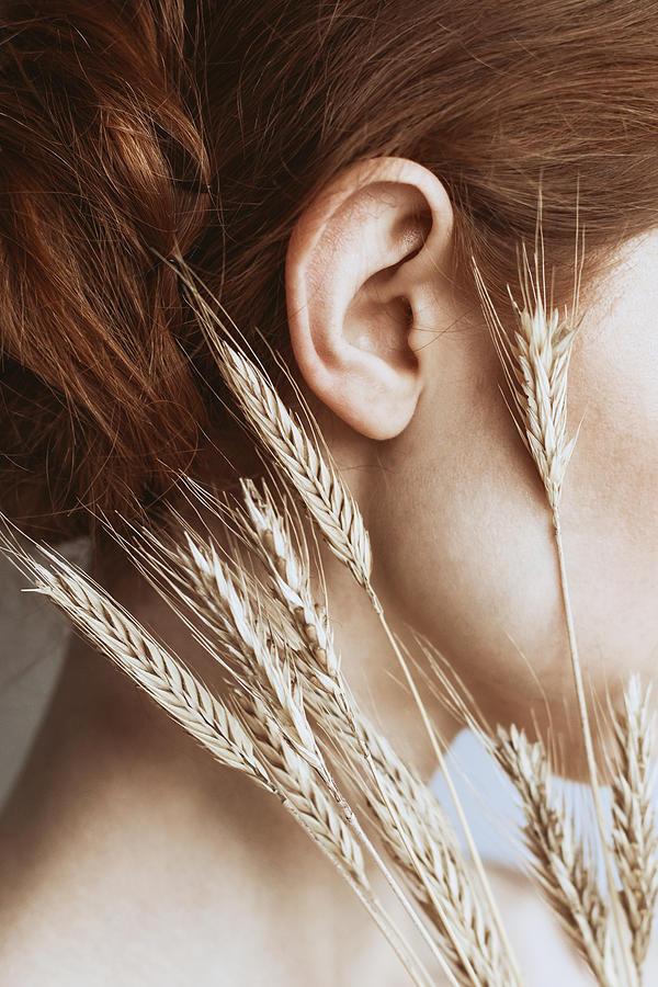 Wheat Photograph - Rye by Dorota Gorecka