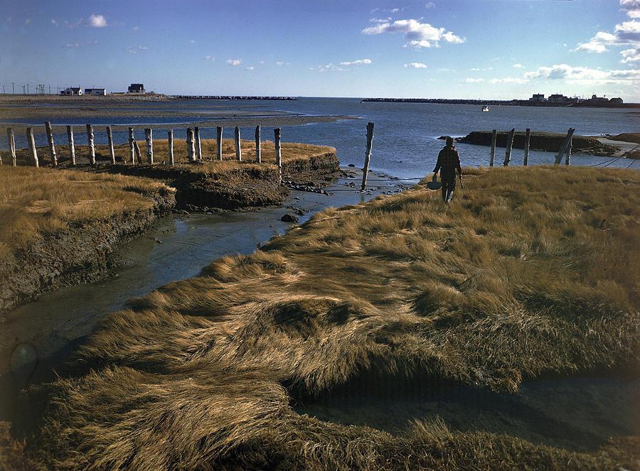 Rye Harbor, New Hampshire Photograph by Eliot Elisofon