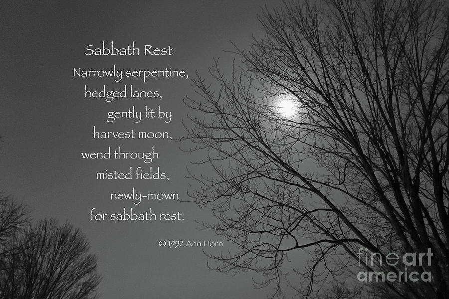 Sabbath Rest Photograph