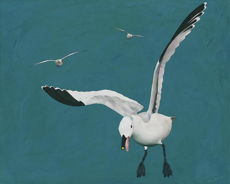 Sabine Seagulls Flying by Jan Keteleer
