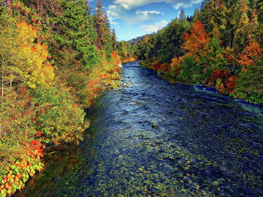 Sacramento River Autumn Photograph