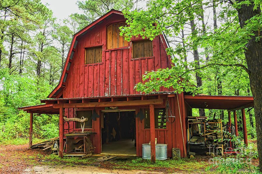 Saddle Barn by Diana Mary Sharpton