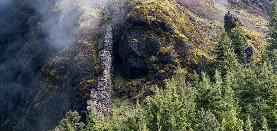 Saddle Mountain Cliffs by Robert Potts