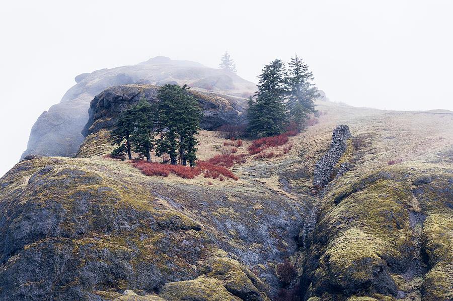 Saddle Mountain Top by Robert Potts