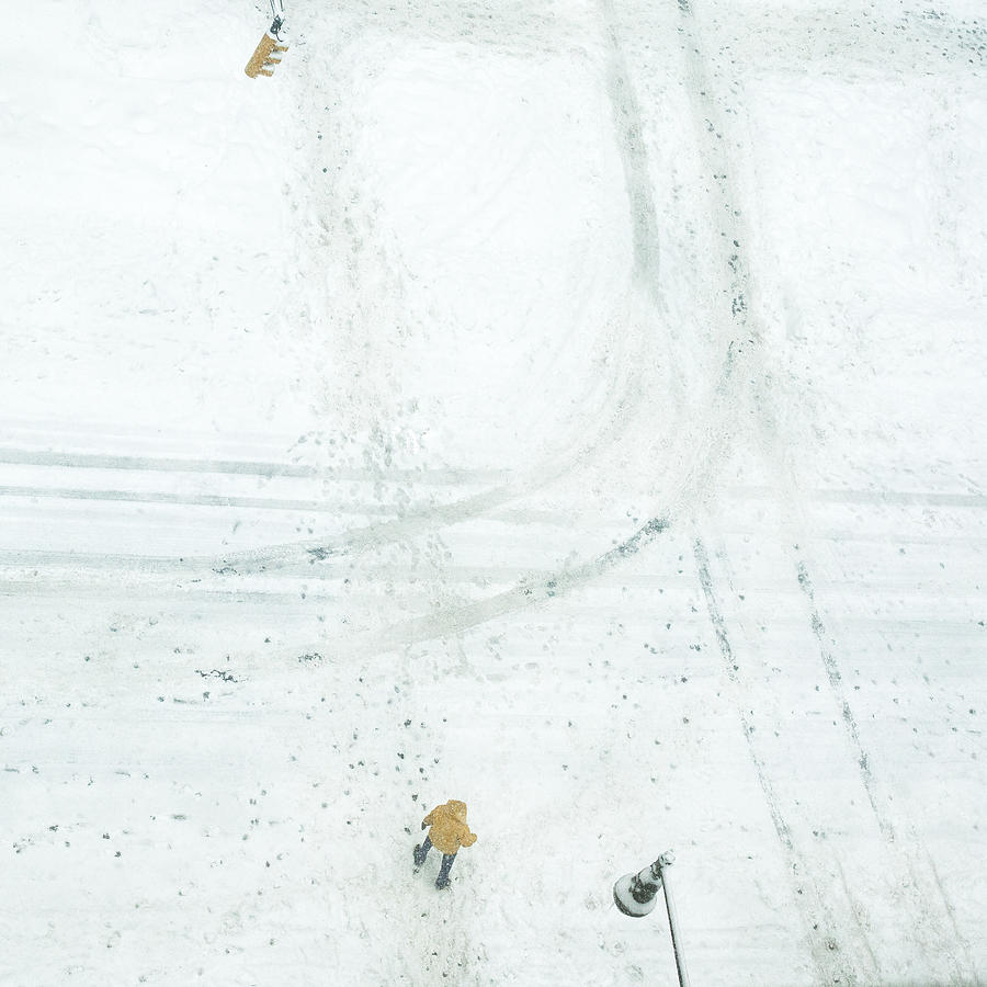 Snow Photograph - Safe Crossing by R. Teneyck