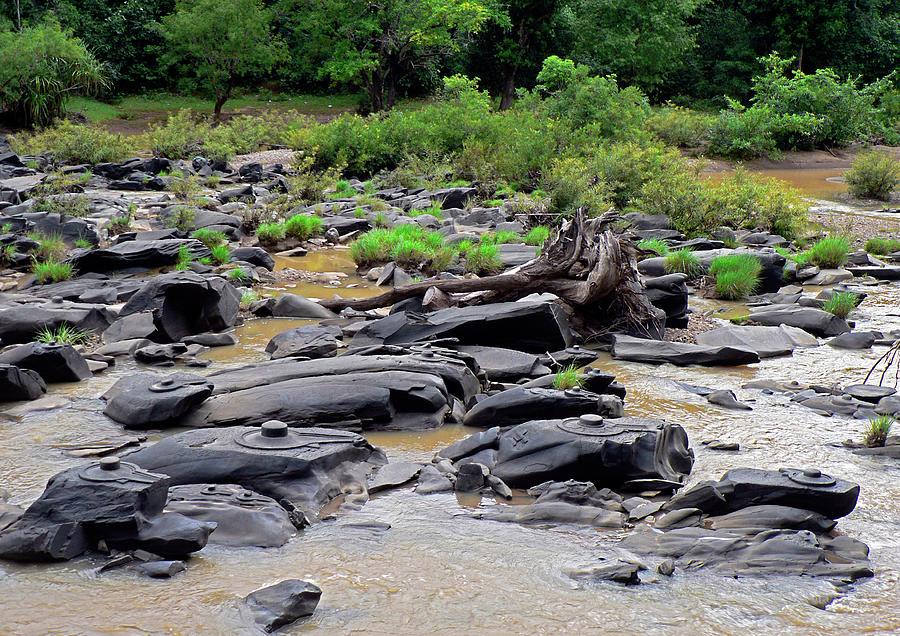 Sahasraling-sirsi-karnataka Photograph by Rbb
