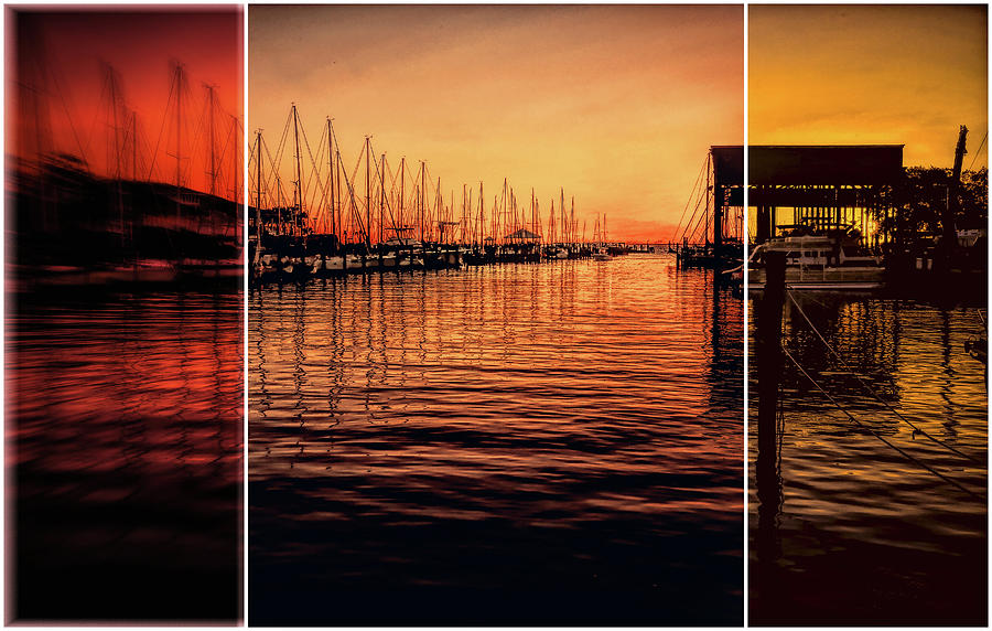 Sail Away Triptych by Judy Vincent