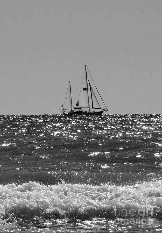 Sailboat Photograph - Sailboat In Black And White by Megan Cohen