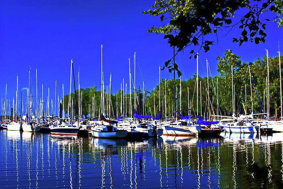 Sailboat marina. by Bill Jonscher