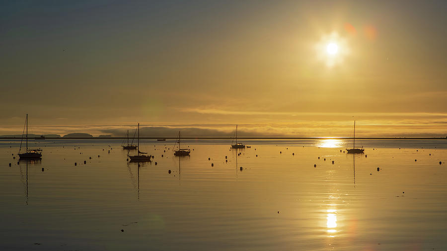 Sailboats in a calm harbor in Maine with fog off shore by Kyle Lee