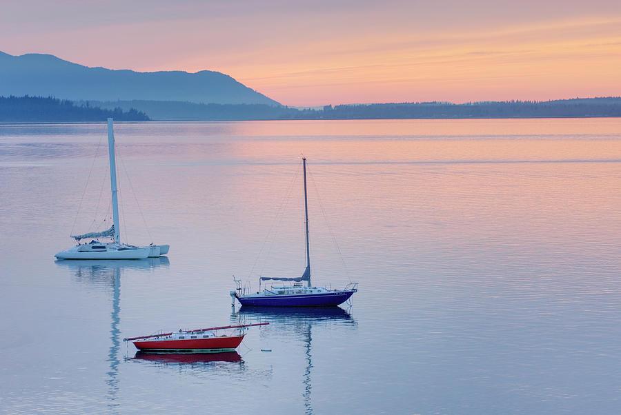 Sailboats In Bellingham Bay Washington Photograph by Alan Majchrowicz