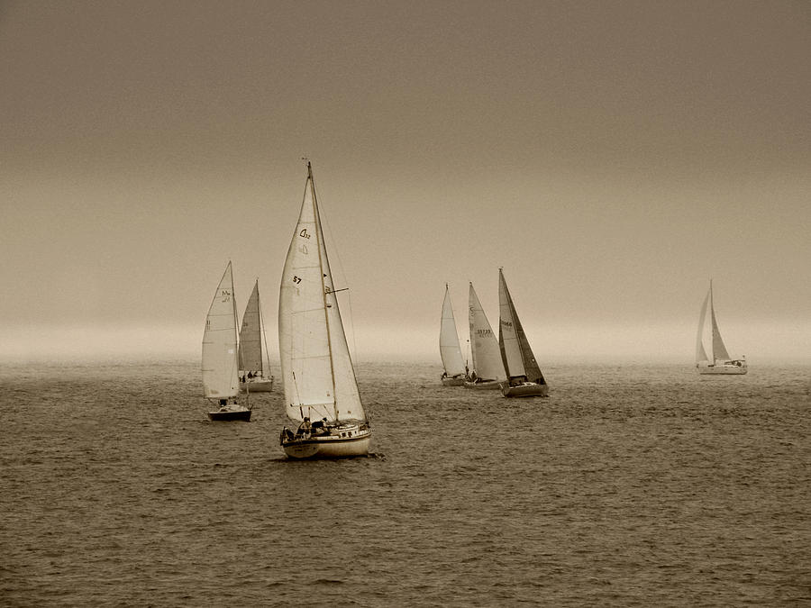Sailboats in Sepia by Micki Findlay