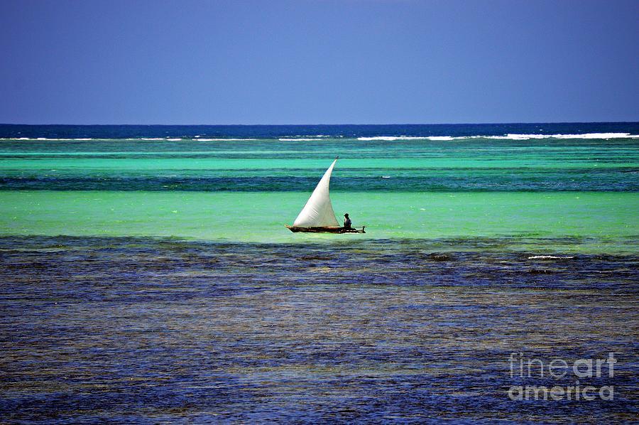 Sailing at Zanzibar by Thomas Schroeder