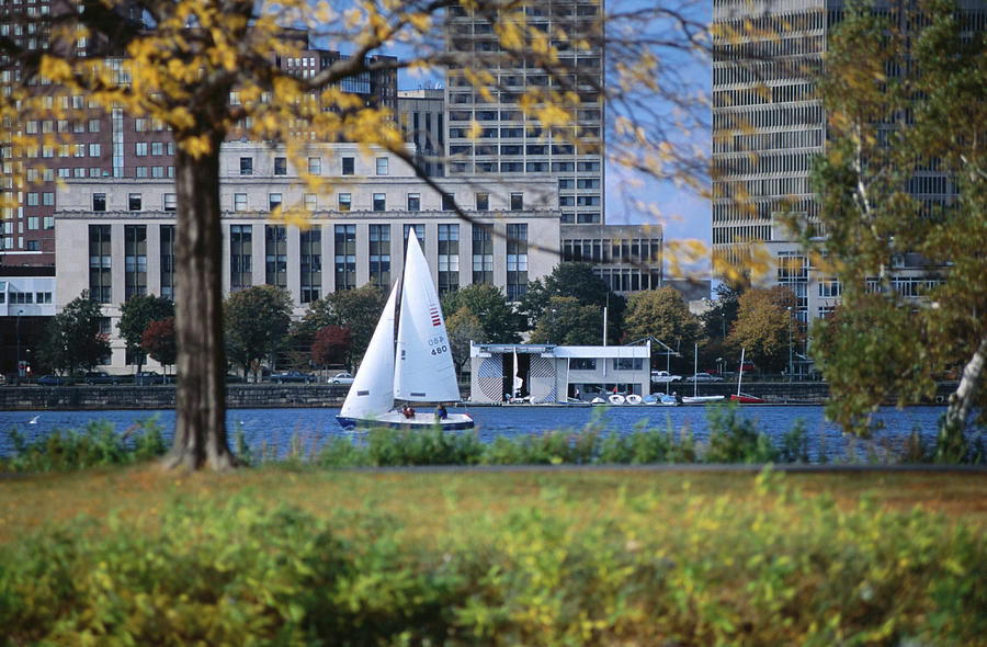 Sailing Off The Esplanade On The Photograph by Lonely Planet