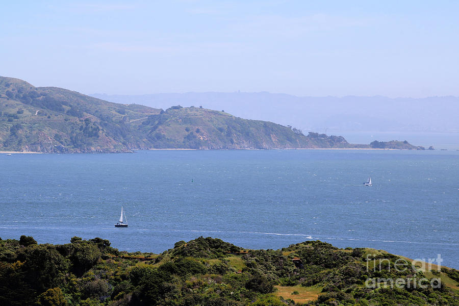 Sailing Sausalito by Diann Fisher