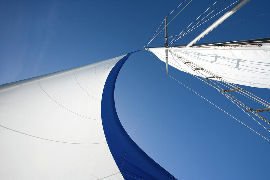 Sailing Photograph by Tammy616