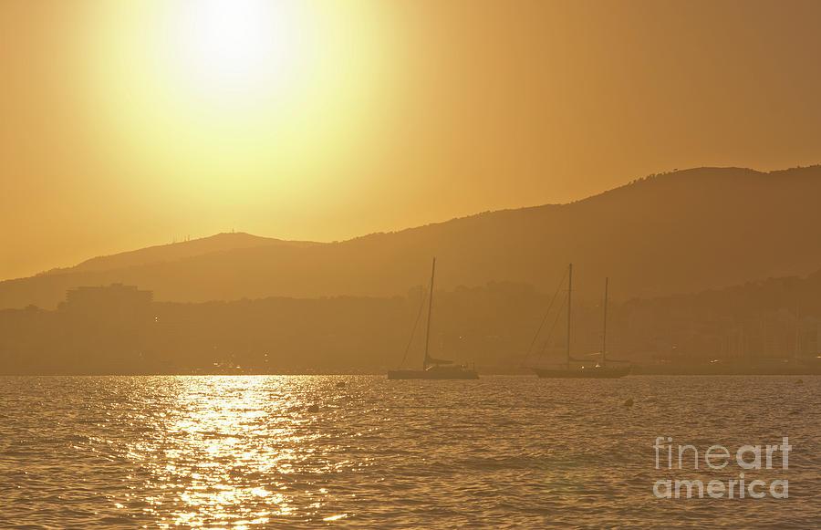 Sailing Yachts In Golden Haze Photograph