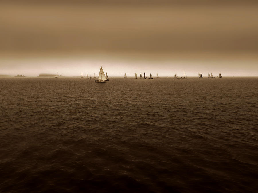 Sails on the Horizon  by Micki Findlay