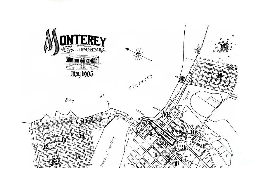 Monterey City Monterey Co., Calif. May 1905 by California Views Archives Mr Pat Hathaway Archives