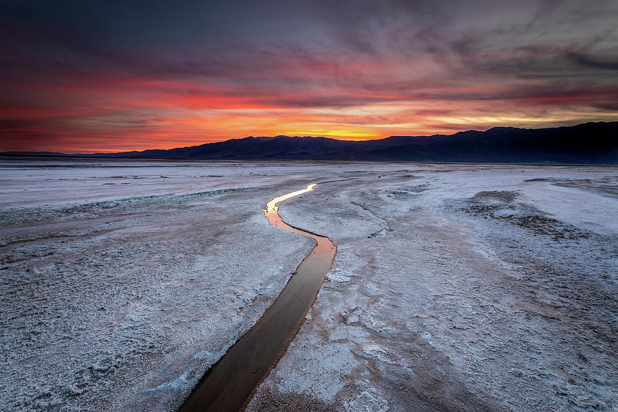California Photograph - Salt Creek Flats by Peter Tellone