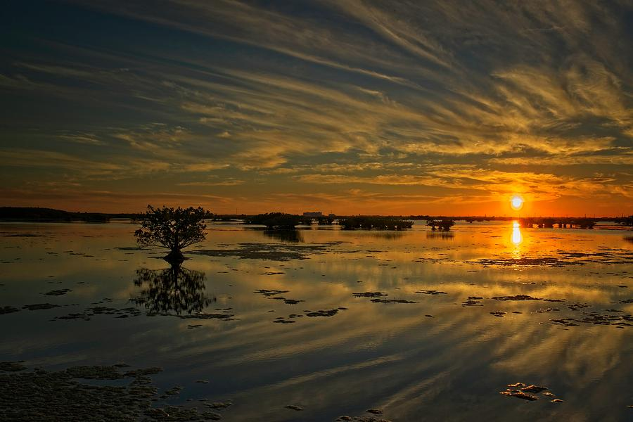 Salt Marsh Sunset by Roy Thoman