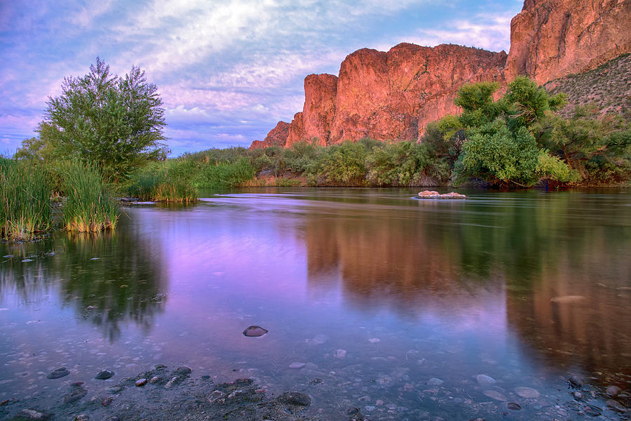 Salt River purple reflections wide by Dave Dilli