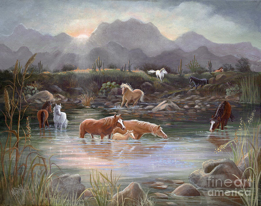 Salt River Sunrise by Marilyn Smith