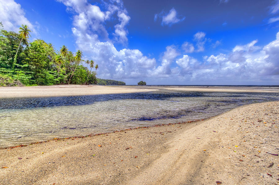 Salybia River Meets The Sea by Nadia Sanowar