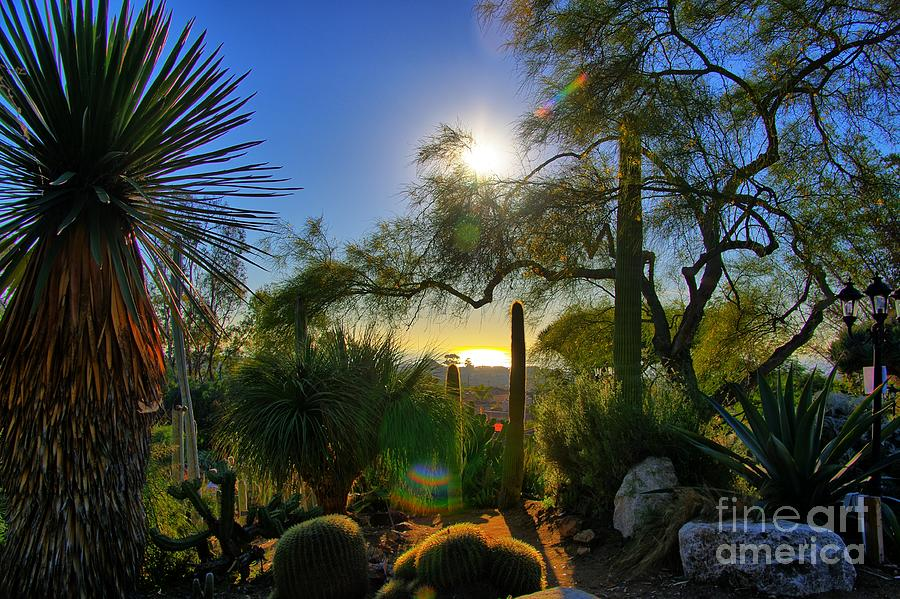 San Diego Botanical Garden by Alex Morales